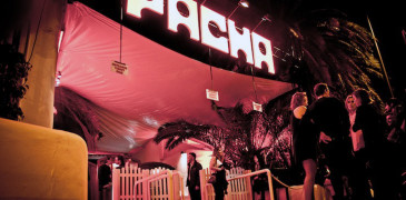 pacha-out
